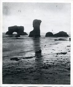 Eadweard Muybridge photograph collection, 1868-1929  (37)  http://purl.stanford.edu/ff991hz8300