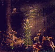 Winter solstice in the wid wood Merry Christmas And Happy New Year, Christmas Greetings, Happy Holidays, Christmas Images, Christmas Art, First Day Of Winter, Unicorn Fantasy, Forest Creatures, Winter Solstice
