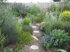 How I learned to be an imperfect Gardner by Houzz