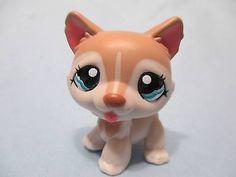 Husky (Roxxy) (I give all my LPS names lmao)