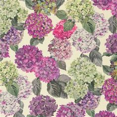 Designer's Guild Sudara Lino - Magenta  And more hydrangeas!