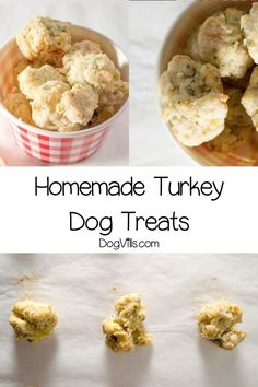 Looking for fun Thanksgiving food for dogs? Check out this yummy turkey homemade dog treat! Dog Biscuit Recipes, Dog Treat Recipes, Raw Food Recipes, Diy Dog Treats, Homemade Dog Treats, Homemade Toys, Dog Nutrition, Thanksgiving Treats, Biscuits