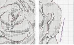 Carabela Rosa 4