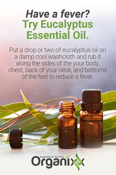 FEVER HOME REMEDY: Here's how to naturally heal fever with eucalyptus essential oil. Click above to find out what sets Organixx Essential Oils apart from other oils on the market. It's important what you put on your skin, and there are some factors many o Essential Oils For Fever, Essential Oils Guide, Organic Essential Oils, Young Living Essential Oils, Essential Oil Blends, Eucalyptus Oil Benefits, Eucalyptus Essential Oil, Coconut Oil For Face, Young Living Oils