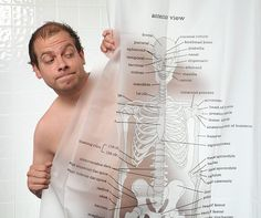 Estude o corpo humano, enquanto toma banho. Mais detalhes no site: www.hiperoriginal.com.br