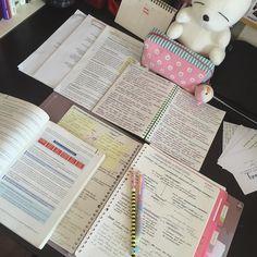 "blackstudyblr2k16: "" It's never too late to start seriously :) #studyblr #studyspo #studying """