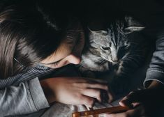 Consent in Cats – When Does Your Cat Want To Be Pet Or Picked Up? Cats and humans have many things in common. For instance, we both love to express affection through touch. But cats, unlike humans, have more touch receptors on their skin, thus are more sensitive. They are also independent and remarkably particular about when to be pet, where to be pet, and how many times they like […] #Cat, #Cats, #Cute, #Katze, #Katzen, #Katzenworld, #Kawaii, #Pets, #ねこ,