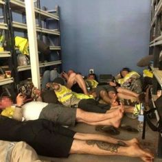 Chevron workers slept on concrete floor, cardboard as cyclone Olwyn ripped through - ABC News Concrete Floors, Western Australia, Chevron, Sleep, Flooring, Bears, Tropical, Beautiful, Concrete Floor