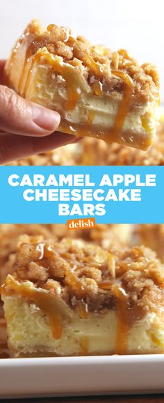 caramel apples Caramel Apple Cheesecake Bars from combine apples and cheesecake to make one delicious dessert. Apple Crisp Cheesecake, Caramel Apple Cheesecake Bars, Caramel Apple Crisp, Cheesecake Recipes, Caramel Apples, Cinnamon Apples, Köstliche Desserts, Dessert Recipes, Health Desserts