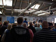 TURIST FISKEAUKTION - THORSMINDE. Auktion afholdes på gammeldags manner hver lørdag i juli og august.