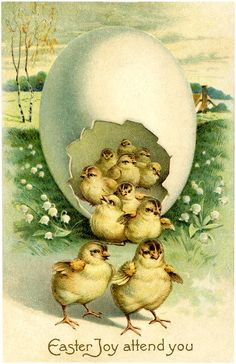 Cute Easter Chicks Download - The Graphics Fairy