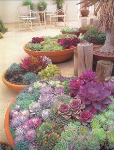 55 Best Ideas For Garden Plants With Low Maintenance 27 – GooDSGN