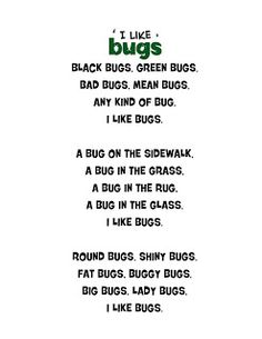 Just 4 Teachers: Sharing Across Borders: I Like Bugs Poem...(just because)