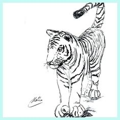 I wish you a happy weekend!  Tiger Sketch Nr: S2016-044 Size: 42 x 59.7 cm   16.5 x 23.5 inch Material: carcoal drawing on paper Shipping: worldwide Price:  90- If you are interested in purchasing this sketch please send an e-mail to nimue@tigressart.com