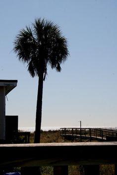 House vacation rental in Folly Beach