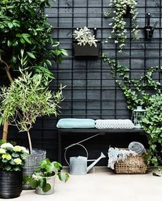 I like the use of black metal grids attached to a black fence . - I like the use of black metal grids attached to a black fence to train and hold … – # fixed - backyard design diy ideas Black Garden Fence, Black Fence, Green Fence, Potager Garden, Terrace Garden, Garden Trellis, Garden Table, Back Gardens, Outdoor Gardens