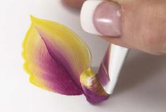 Basic Techniques of One-Stroke Flower Petal Painting | Features | Painters Online