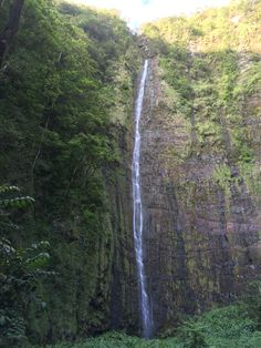 Waikiki water fall. 185 feet high.   On pipiwai trail.  In Haleakala national park. Maui