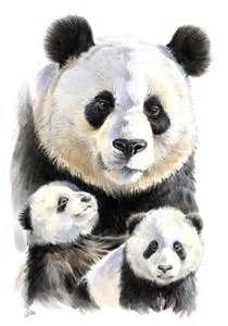 Resultados de la búsqueda de imágenes: pandas dibujados a lapiz - Yahoo Search