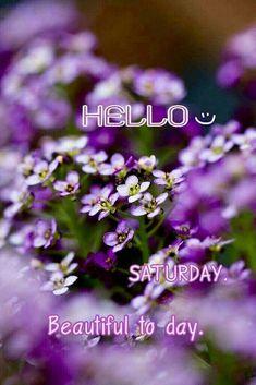 Hello Saturday, Good Morning Saturday, Happy Saturday, Good Morning Quotes, Sunday, Saturday Images, Saturday Quotes, Happy Day Quotes, Good Morning Beautiful Images