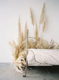 is pampas grass the floral du jour?