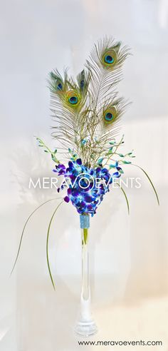 Peacock Feathers and Fresh Flowers