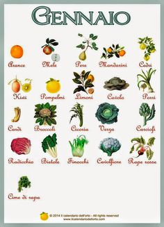 Briciole di Sapori : Gennaio... il calendario della natura