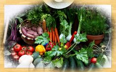 Kezdőlap - gazigazito.hu Table Decorations, Garden, Home Decor, Garten, Decoration Home, Room Decor, Lawn And Garden, Gardens, Gardening