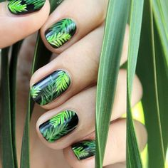 It's important to consider your tropical nail art designs when summer is approaching. Tropical nail art design has a wide range you can choose bright colors. For example yellow purple orange white red and blue will be the best choice to make yo Tropical Nail Designs, Tropical Nail Art, Tropical Vibes, Nail Art Designs, Flower Nail Designs, Bright Red Nails, Green Nails, Bright Colors, Nail Art Halloween