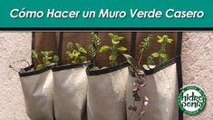 Sabes, ¿Cómo hacer un #muro #verde casero?   ¡Visítanos!  http://hidroponia.mx/ www.hydroenv.com.mx http://hidroponia.mx/   #Video