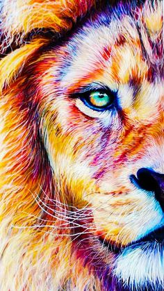 gorygul - 0 results for animals Lion Images, Lion Pictures, Lion And Lioness, Lion Of Judah, Animal Paintings, Animal Drawings, Lion Drawing, Lion Love, Lion Painting
