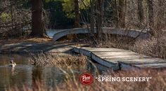After a snowy morning, it turned out to be a beautiful spring day.  #PureMuskoka #Muskoka