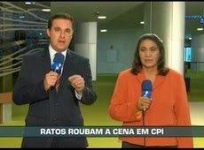 Galdino Saquarema 1ª Página: Ratos no depoimento de Vaccari na CPI da Petrobras.