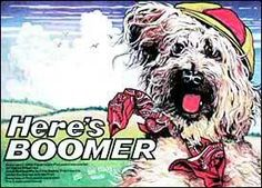 In pratica questa serie parla di un cane di nome Boomer che, viaggiando di città in città aiuta le persone in difficoltà.