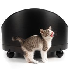 Beautiful Black #pet #bed (medium) from #shopideal. 10% goes to your favorite #nonprofit!
