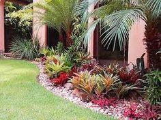 25 Mejores Imagenes De Jardines Con Bromelias Con Piedras Window