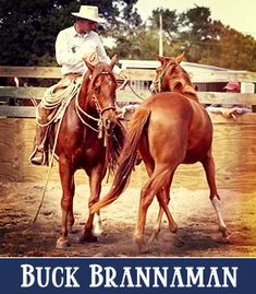 Bridling Your Horse with Buck Brannaman Buck Brannaman, Workout At Work, Horse Training Tips, The Ranch, Horse Stuff, What Is Life About, Pet Care, Cowboys, Legends