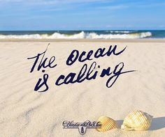 The ocean is calling! Will you answer?