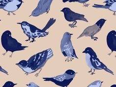 More Birds by Leah Reena Goren Bird Patterns, Textile Patterns, Print Patterns, Textile Design, Bird Illustration, Graphic Design Illustration, Graphic Art, Illustration Styles, Surface Pattern