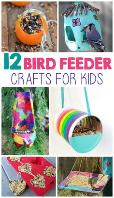 Bird feeders are a great way for you to enjoy wildlife with your kids. One of the best things about making your own bird feeder is that…