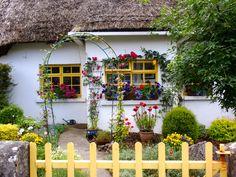 ...and windows.  Irish cottage ~ lovin' the yellow ♥