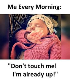 funny pictures, jokes and funny memes Funny Baby Memes, Funny School Memes, Cute Funny Quotes, Crazy Funny Memes, Really Funny Memes, Funny Relatable Memes, Funny Facts, Funny Babies, Latest Funny Jokes