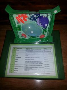 examples of plant cell projects / how to make a model of a plant cell with paper / animal cell model in a shoebox / animal cell model shoebox 3d Plant Cell, Plant Cell Project, Cell Model Project, Plant Cell Model, 3d Cell, Science Projects For Kids, School Projects, Fair Projects, School Hacks