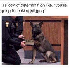 Lol poor greg