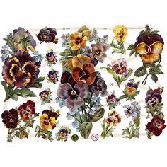 Todo con las flores: decorar, crear, degustar, cuidar...................: Las flores se imponen !
