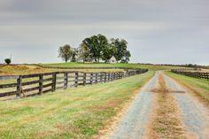 288 +/Ac of Gently Rolling Pasture Historical Estate & Cottage  Virginia-Gordonsville  $1,450,000 4300 sqft 4 Bedrooms-2 Bathrooms/Pool