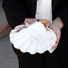 Ring Bearer Shell for beach vow renewal