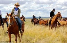A gallop through the Queensland's remote Outback (with a grumpy horse in tow! Australia Living, Australia Travel, Alfred Munnings, Clear Night Sky, Cattle Drive, Old Pub, Travel Articles, Stargazing, Small Towns