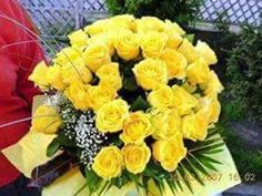 Daddy s yellow roses Yellow Roses, Beautiful Birds, Make It Yourself, Table Decorations, Aga, Shank, Google, Youtube, Daddy