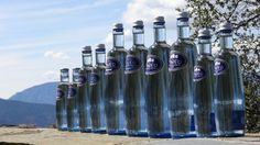 The whole range of Pineo water